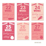 Pregnancy 22-27 weeks Vector design templates for journal cards,. Scrapbooking cards, greeting cards, gift cards, patterns, blogging. Planner cards. Cute doodle Royalty Free Stock Photo