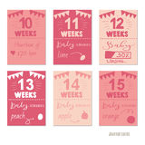 Pregnancy 10-15 weeks Vector design templates for journal cards. Scrapbooking cards, greeting cards, gift cards, patterns, blogging. Planner cards. Cute doodle Stock Photos