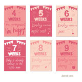 Pregnancy 4-9 weeks Vector design templates for journal cards. Scrapbooking cards, greeting cards, gift cards, patterns, blogging. Planner cards. Cute doodle Stock Photography
