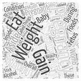 Pregnancy weight gain word cloud concept word cloud concept vector background Royalty Free Stock Photos