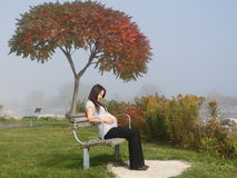 Pregnancy womam. The pregnancy woman is enjoy her life stock photography
