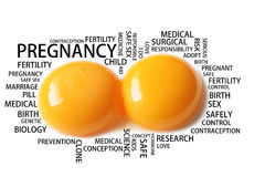 Pregnancy wording conceptual with two eggs Stock Image