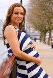 Pregnancy Stock Photography