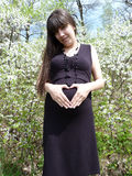 Pregnant Royalty Free Stock Photography