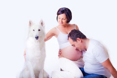 Pregnant Stock Image