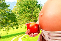 Free Pregnant Stock Photos - 31622163