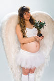 Pregnant angelic woman on white background with small tree Stock Images