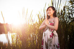 Pregnant asian woman Stock Images