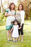 Pregnant Asian women royalty free stock photo