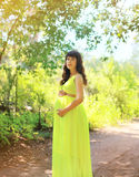 Pregnant beautiful woman in dress. In the park Royalty Free Stock Image