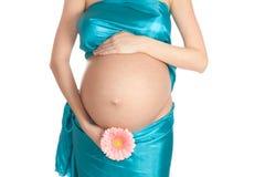 Pregnant Belly Stock Photos