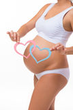 Pregnant belly with blue and pink heart. Sex of the child. Twins, girl, boy. Vertical closeup isolated white background royalty free stock photo