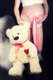 Pregnant belly with a pink ribbon and a Teddy bear in the hands of Royalty Free Stock Photos
