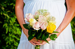 The Pregnant Bride Stock Image