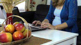 Pregnant business work with notebook Stock Photography