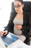 Pregnant businesswoman. Royalty Free Stock Image