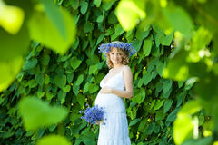 Pregnant caucasian woman. Takes rest outdoor stock image