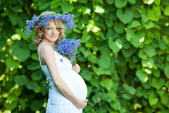 Pregnant caucasian woman royalty free stock photo