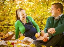 Pregnant couple having picnic in autumn park Royalty Free Stock Image