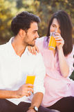 Pregnant couple on picnic Royalty Free Stock Image