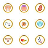 Pregnant family life icon set, cartoon style. Pregnant family life icon set. Cartoon set of 9 pregnant family life vector icons for web isolated on white Stock Image