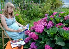 The pregnant female artist writes with watercolor paints the blossoming hydrangea in a garden.  stock photo