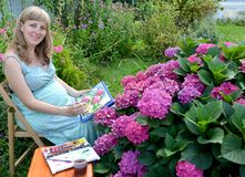 The pregnant female artist writes with watercolor paints the blossoming hydrangea in a garden.  royalty free stock images