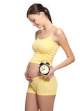 Pregnant female holding clock near the stomach Stock Photos