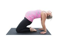 Pregnant fitness woman make stretch on yoga pose. Pregnant fitness woman make stretch on yoga and pilates pose on white background The concept of Sport and stock images