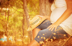 Pregnant girl in autumnal park Royalty Free Stock Photography