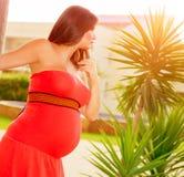 Pregnant girl on backyard Stock Image