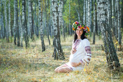 Pregnant girl in a birch grove. Stock Photography