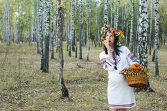 Pregnant girl in a birch grove. Stock Images