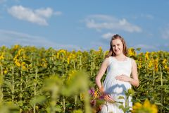 A pregnant girl in dress is standing with a yellow sunflower in the field. Pregnant woman holding her belly against the background royalty free stock image