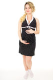 Pregnant girl in a dress Royalty Free Stock Image
