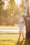 Pregnant girl in a light dress stock photography