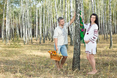 Pregnant girl and man in a birch grove. Royalty Free Stock Photos