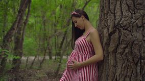 Pregnant girl in the park on a background of green trees. A girl in a striped white-red dress stands leaning on a tree. stock footage
