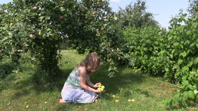 Pregnant girl sit under apple tree and gather fallen apple stock footage