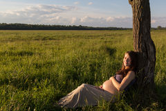 Pregnant girl in spring field at sunset Stock Images