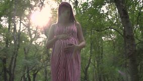 A pregnant girl is standing in the park. A girl in a striped white-red dress stands and holds her hand on her tummy. stock video footage