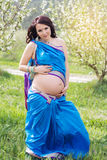Pregnant girl is wearing sari on the nature Royalty Free Stock Image