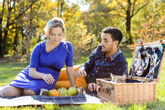 Pregnant happy and smiling couple on picnic with cat Royalty Free Stock Image