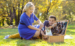 Pregnant happy and smiling couple on picnic with cat. On sunny day royalty free stock photos