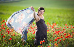 Pregnant happy woman in a flowering poppy field Royalty Free Stock Images