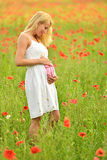 Pregnant happy woman in a flowering poppy field outdoors Stock Photos