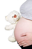 Pregnant hold bear near belly Royalty Free Stock Photography