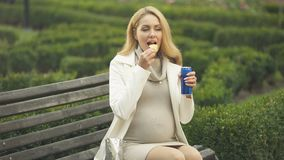 Pregnant lady eating chips and drinking soft drink, sitting park, unhealthy food. Stock footage stock video footage