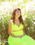 Pregnant lovely woman in flowers Stock Photos