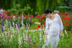 Pregnant lovely woman in summer day Stock Image